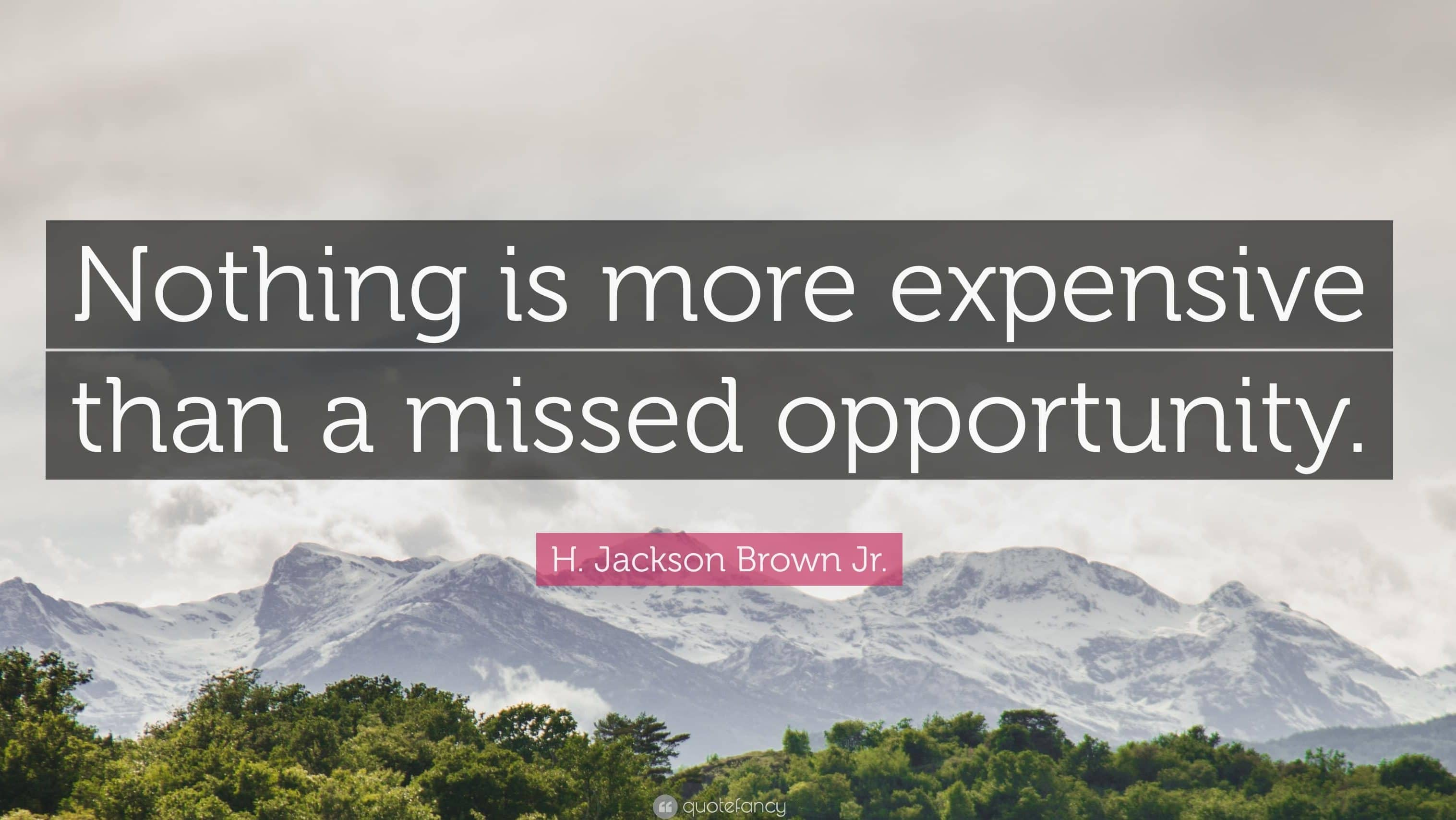 What Opportunities have you missed to grow your business?